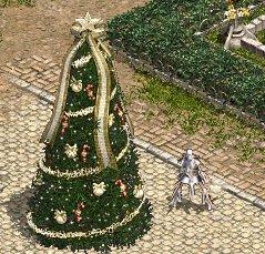 アデンのクリスマスツリー